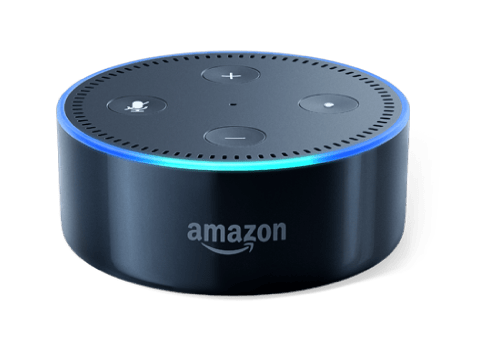 Alexa Skill Developer